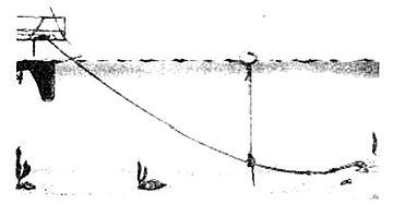 Skamieliny z datowania radiowęglowego