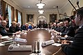 President Trump meets with the Coronavirus Task Force (49613833793).jpg
