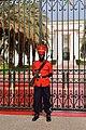 Presidential Palace (49333168837).jpg