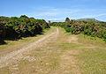 Princetown Railway near Burrator.jpg