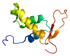 Protein MLLT7 PDB 1e17.png