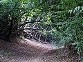 Public footpath - geograph.org.uk - 976750.jpg