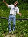 Pueraria montana lobata (5182515738).jpg