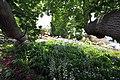 Quinta das Vinhas ^ Cottages, Estreito da Calheta, Madeira, Portugal, 27 June 2011 - Main house area - panoramio (18).jpg