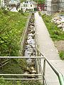 Rügen Sassnitz Steinbach-wieder-geöffnet May-2009 SL272805.JPG
