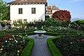 Rapperswil - Einsiedlerhaus - Rosengarten IMG 0425.JPG