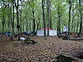 Re-occupation village in the Hambach forest 02.jpg