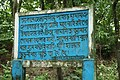 Read & Enjoy here in Botanical Garden & Eco-Park, Sitakunda, Chittagong, Bangladesh.jpg