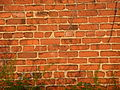 Red-brick-wall-texture-2.jpg