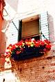 Red flowered balcony.jpg