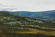 Refugio Nacional de Vida Silvestre Tetlin, Alaska, Estados Unidos, 2017-08-25, DD 05.jpg