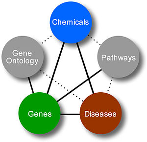 Gene Disease Database - Relationships in Gene Diseases