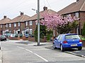 Residential area off Tileshads Lane, Cleadon Village - geograph.org.uk - 6409.jpg