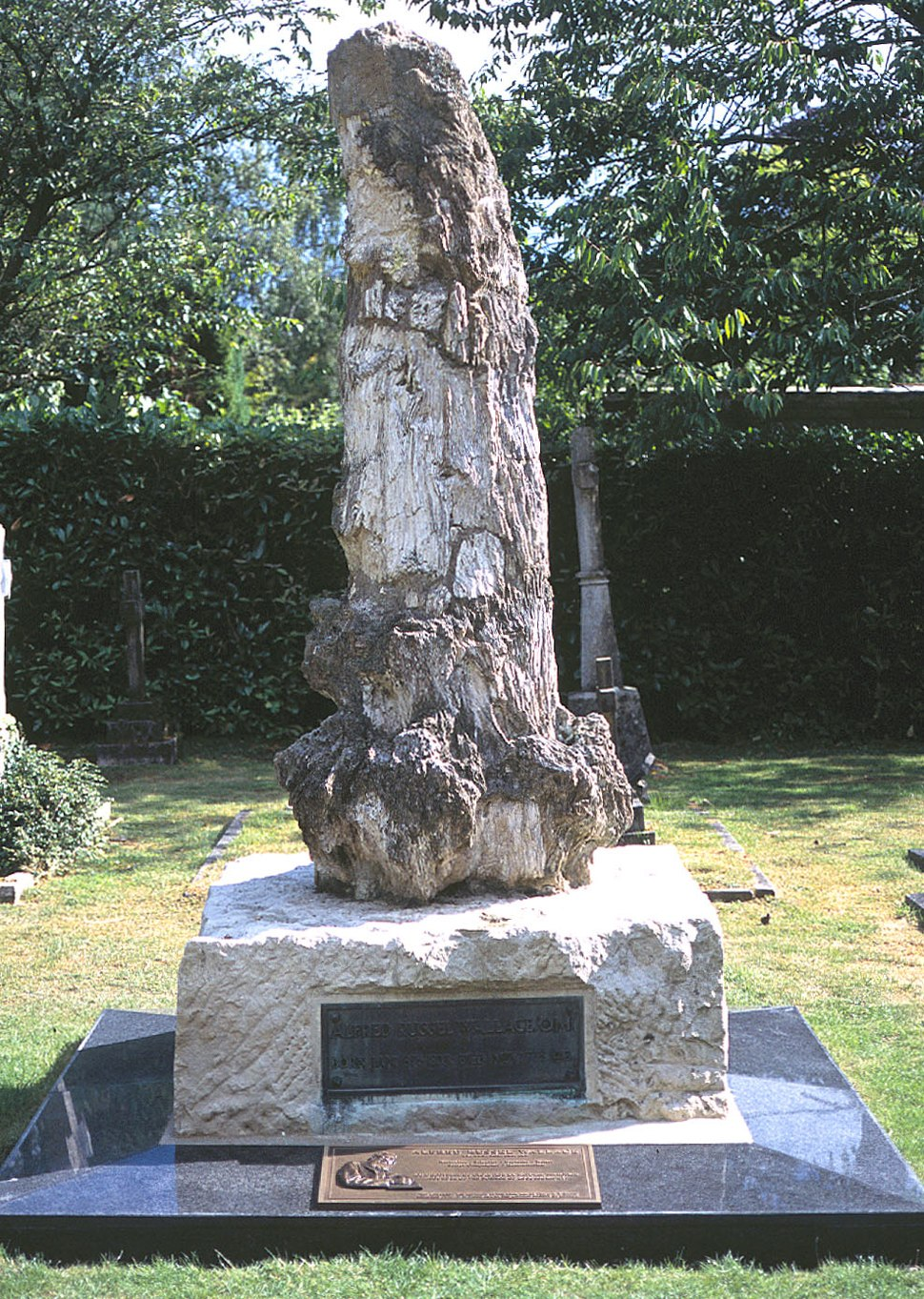 Restored grave of AR Wallace