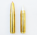 Riifle-cartridge-50-mayhem-two-bullets.png