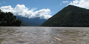 Tambo River (Peru) - View of the Tambo River near Puerto Prado