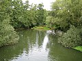 River Mole in Pixham - geograph.org.uk - 806239.jpg