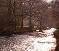 River Teign - geograph.org.uk - 1282807.jpg