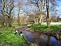 River Unk - geograph.org.uk - 398195.jpg