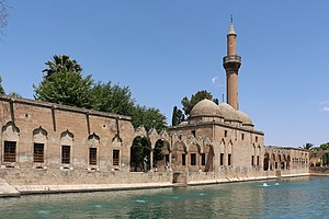 Urfa - According to tradition, Nimrod had Abraham immolated on a funeral pyre, but God turned the fire into water and the burning coals into fish. The pool of sacred fish remains to this day.