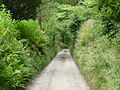 Road near Malham Tarn 02.jpg