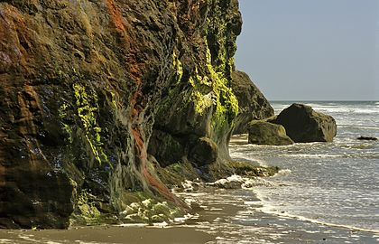 Rock face, Ruby Beach, Olympic National Park, Washington State, 1992.JPG