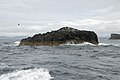 Rock outcrop west of Staffa - geograph.org.uk - 502452.jpg