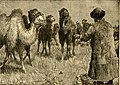 Roosevelt's African trip; the story of his life, the voyage from New York to Mombasa, and the route through the heart of Africa, including the big game and other ferocious animals, strange peoples and (14750484902).jpg
