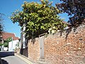 Rose Lane, Wivenhoe, Essex-3591155233.jpg