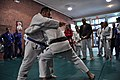 Royce Gracie Seminar 2011-02.jpg
