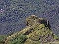 Ruinas medievales (14801711601).jpg