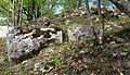 Ruine Lägelen (Wagenburg), Donautal 10.JPG