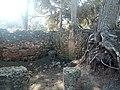 Ruines Romaines Tipaza 17.jpg