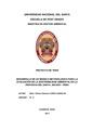 SOSTENIBILIDAD AMBIENTAL SE UNA REGION.pdf