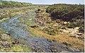 Salt Marsh Channel, by Gore Saltings. - geograph.org.uk - 195658.jpg