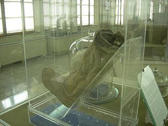 Saltmen - Left shoe with lower leg of Salt Man 1