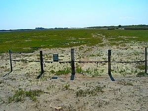 West Wittering - Image: Saltmarsh, East Head geograph.org.uk 522918