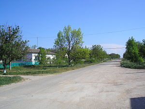 Samav 1.JPG