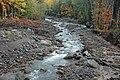 Sandy River (Old Maid Flat, west of Mt. Hood Volcano, Oregon, USA) 2 (20035367951).jpg