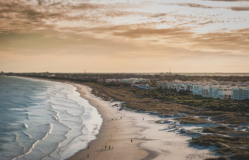 File:Sandy shoreline (Unsplash).jpg
