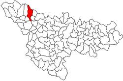 Location of Sânpetru Mare in Timiș County
