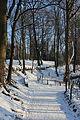 Schaerbeek Parc Josaphat 1206.jpg