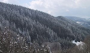 Walther Penck - Mountains of the Black Forest where Walther Penck studied the effects of doming on geomorphology.