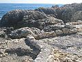 Sea - panoramio (5).jpg