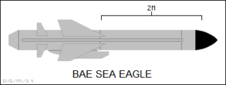 Sea Eagle (missile) Type of Anti-ship missile