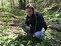 Sean Sherman of the Company The Sioux Chef foraging Wild Ramps.jpg