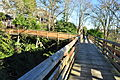 Seattle - Pine Street pedestrian bridge in Madrona 03.jpg
