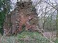 Seskinore Castle (Perrymount) - geograph.org.uk - 1097330.jpg