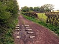 Silkstone Wagon Way - geograph.org.uk - 402666.jpg