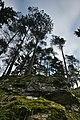 Skály v blízkosti Císařské jeskyně, Ostrov u Macochy, okres Blansko.jpg